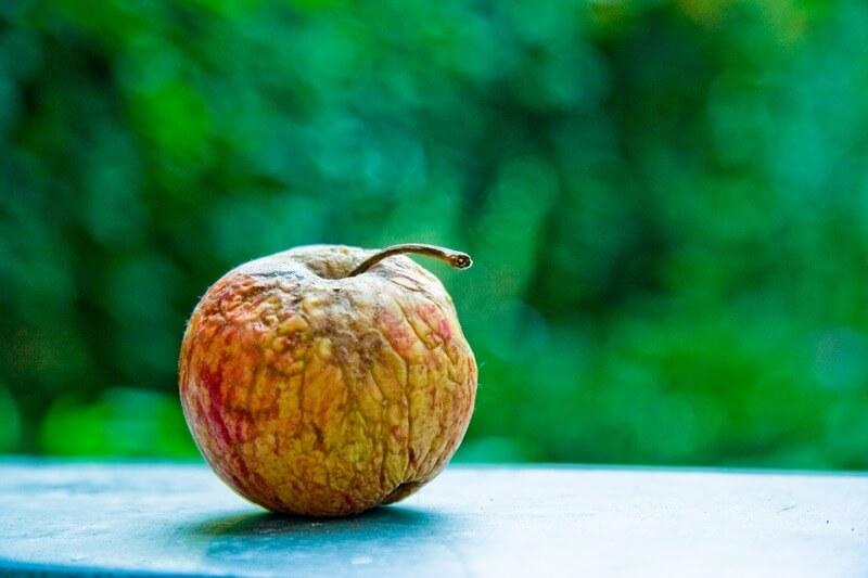 Fauliger Apfel