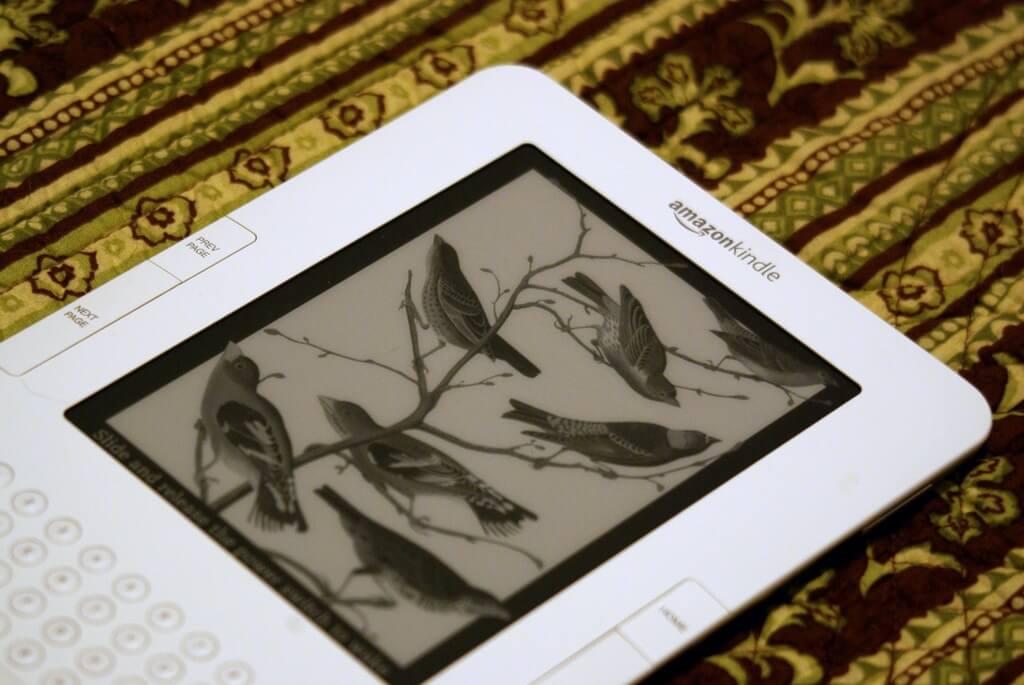 Kindle, noch mit Inhalt | Bestimmte Rechte vorbehalten von sarowen