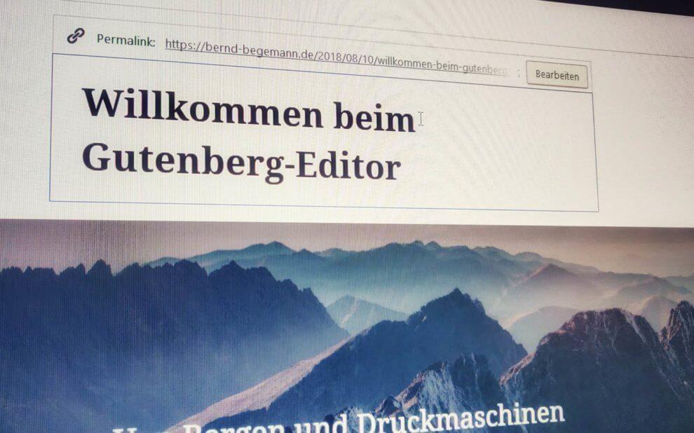 Beispiel-Artikel im Gutenberg-Editor